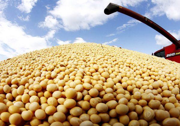 comercializacion-de-granos